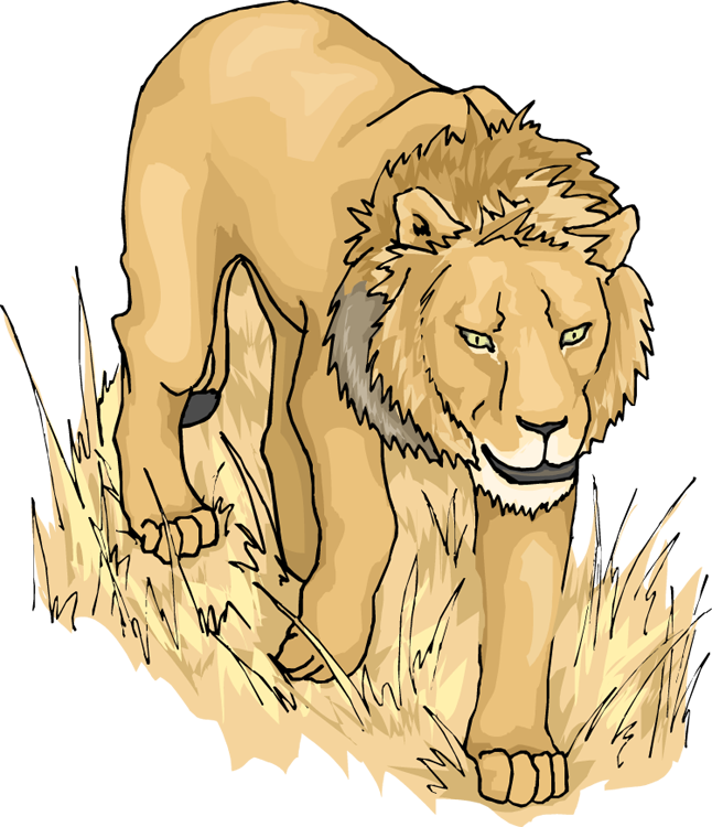 Transparent lion clipart - Lion Clipart Lion Side A Clipart Image - Lion Animation