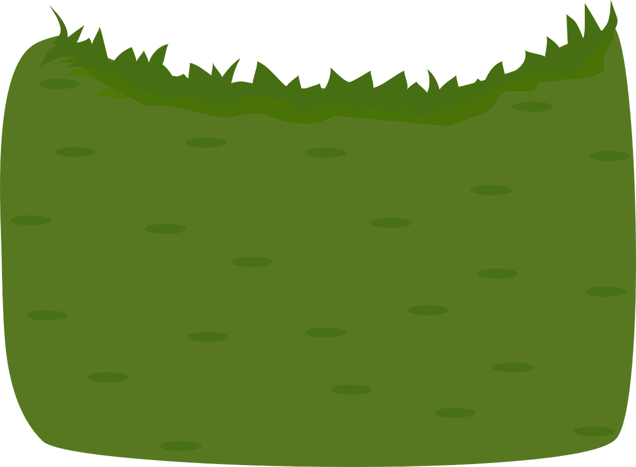 grass environment nature free picture padang rumput vector png transparent cartoon jing fm grass environment nature free picture
