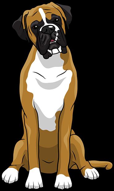 Boxer Emoji Stickers Messages Sticker 3 Dog Boxer Cartoon Transparent Cartoon Jing Fm