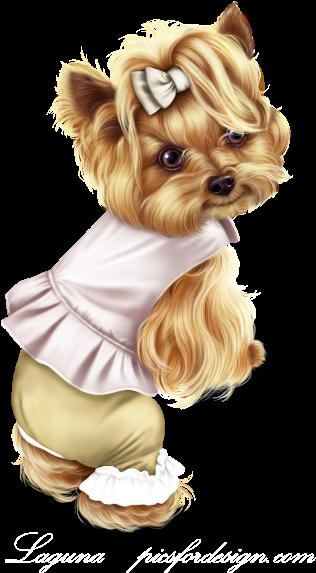 Little Pumpkin Yorkie Yorkshire Terrier Transparent Cartoon Jing Fm