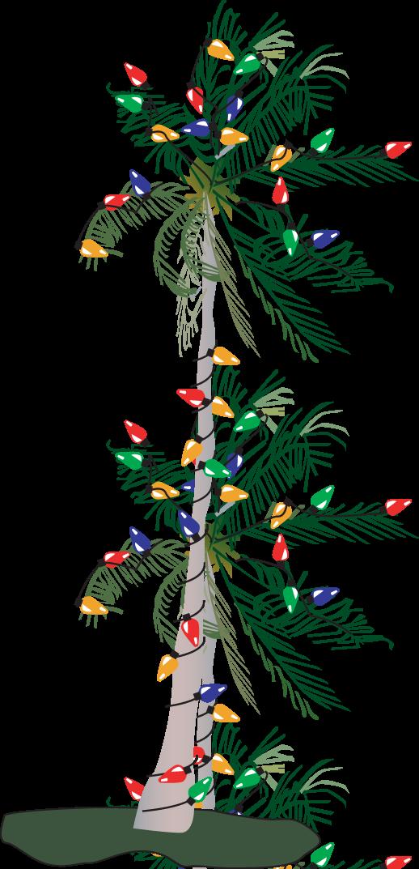 Transparent christmas lights clip art - 28 Collection Of Palm Tree With Christmas Lights Clipart - Christmas Palm Tree Vector