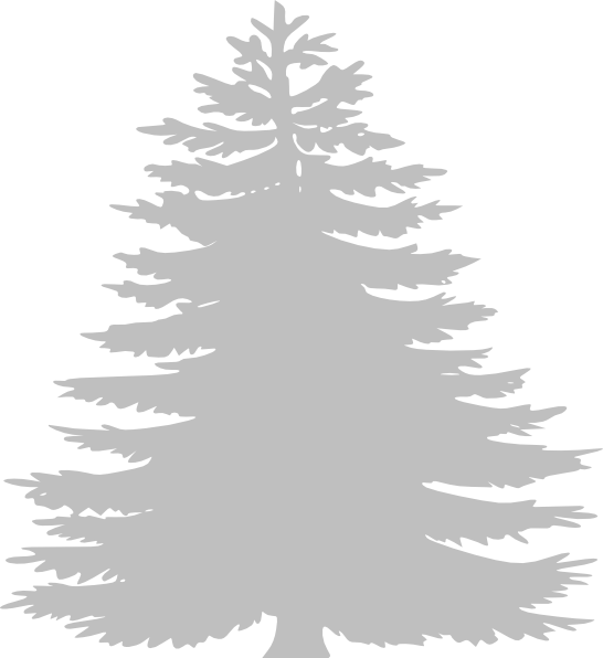 Transparent christmas tree clip art black and white - White Pine Tree Clip Art - Pine Tree Clipart White