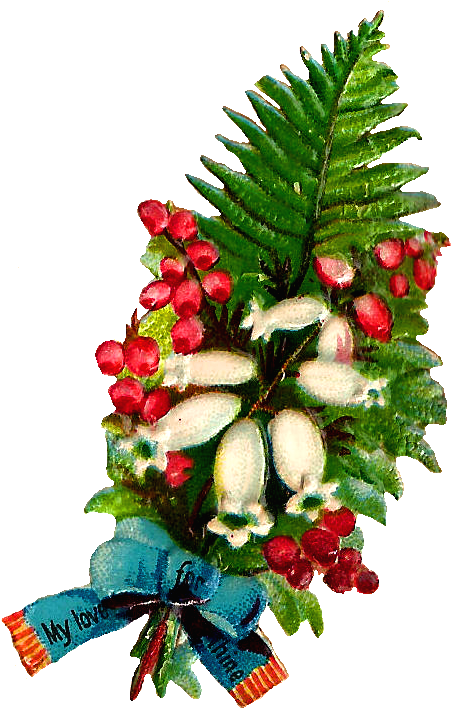 Transparent lily of the valley clipart - I Created This Digital Flower Clip Art From A Little - Christmas Tree