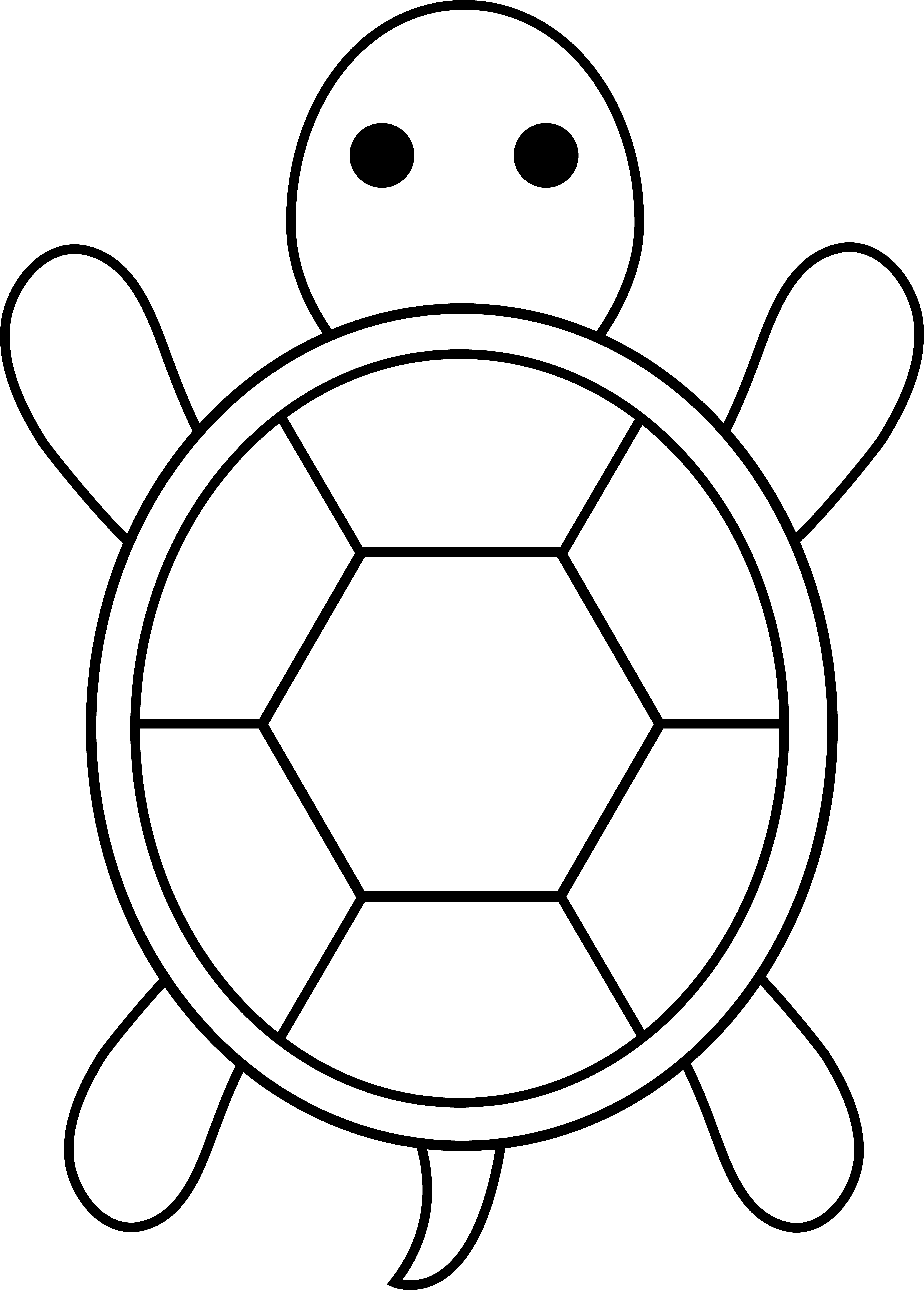 Cute Colorable Turtle Cute Turtle Drawing Easy Transparent