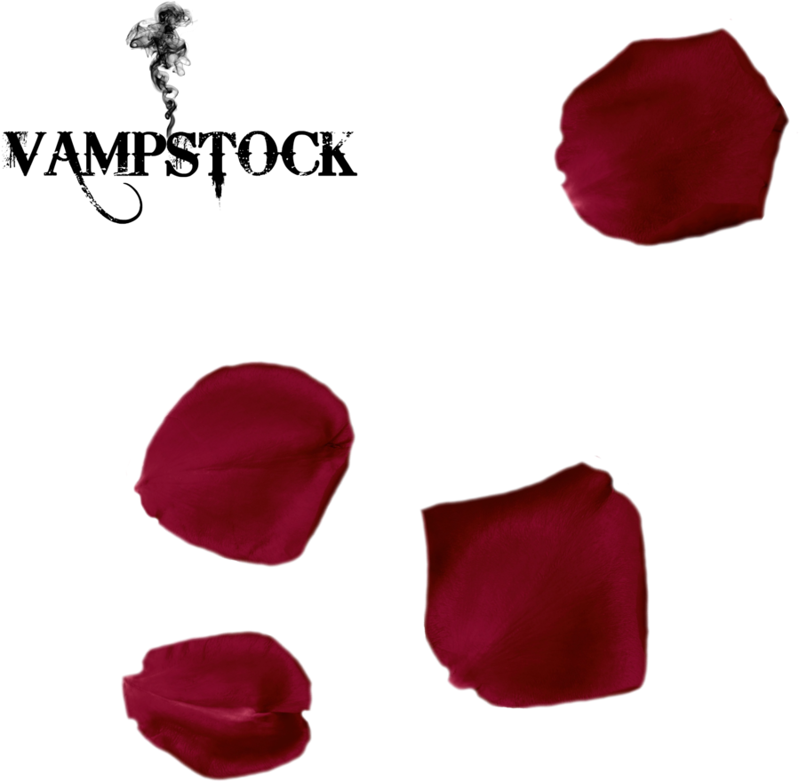 Transparent flower petal clipart - Flower Petal Png - Single Red Rose Petals Png