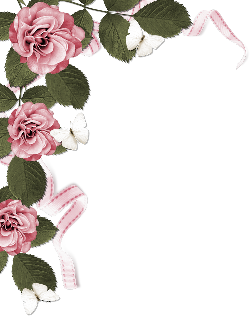 Transparent rose border clipart - Rose Page Border - Dusty Pink Flower Borders