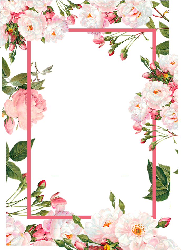 Pink Borders Flower Free Png Hq - Floral Frames Vector Png ...