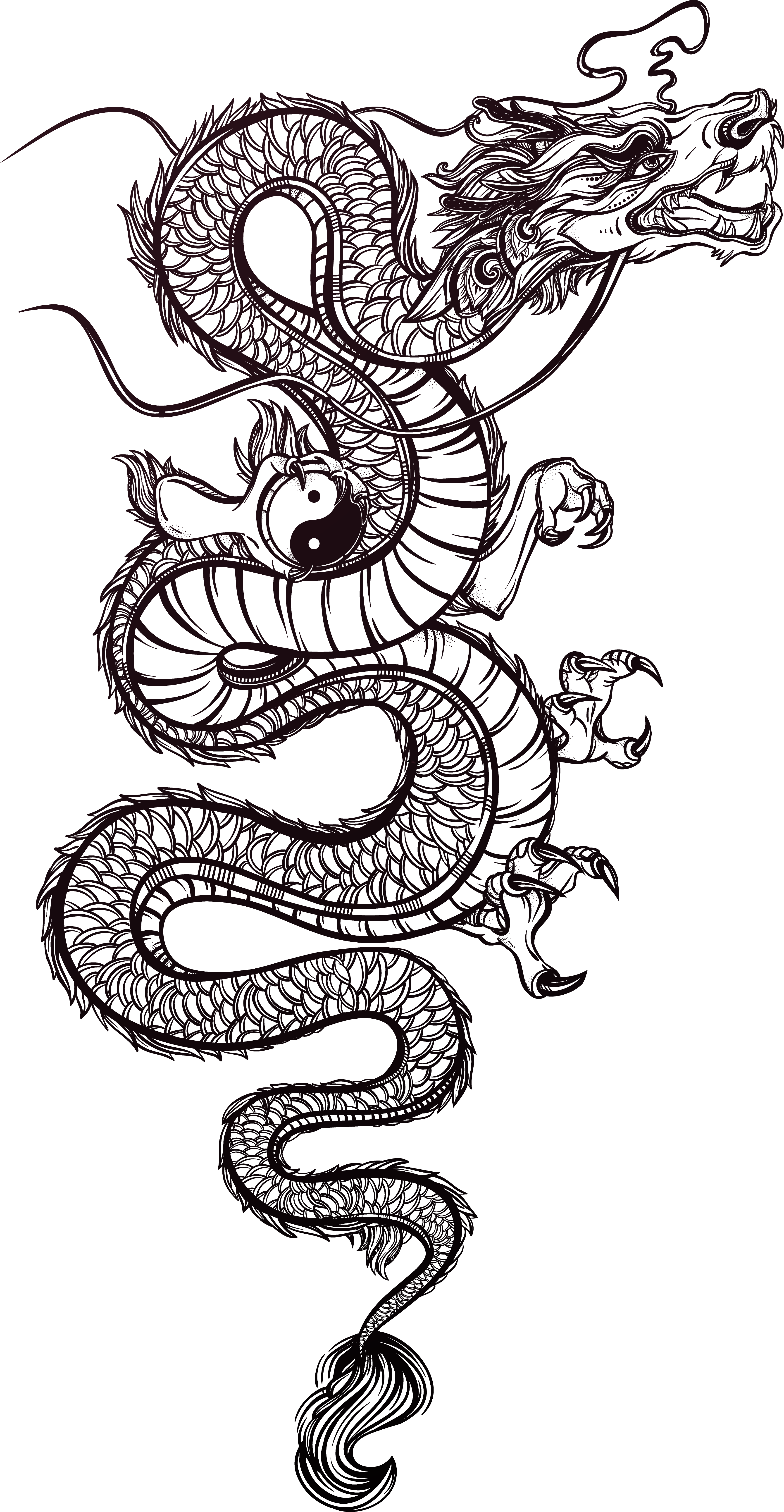 Tattoo Chinese Illustration Dragon Vector Hand Painted ...