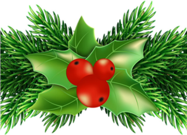 Christmas Holly Clipart Transparent.Pictures Of Christmas Holly Christmas Holly Png