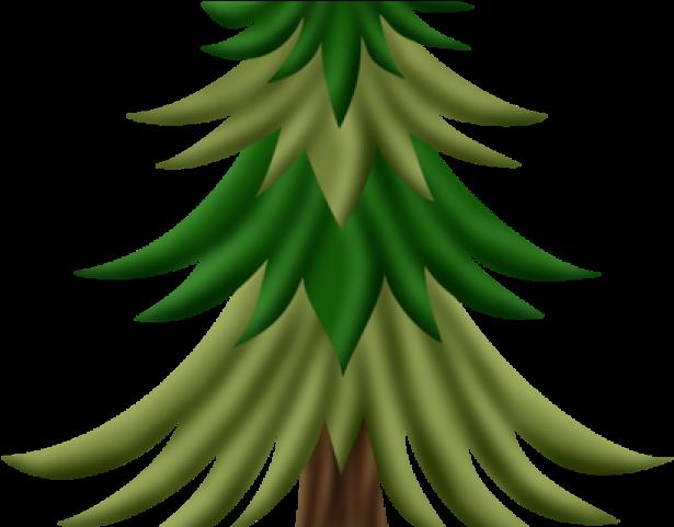 Transparent fir tree clipart - Fir Tree Clipart Woodland Tree - Saba Banana
