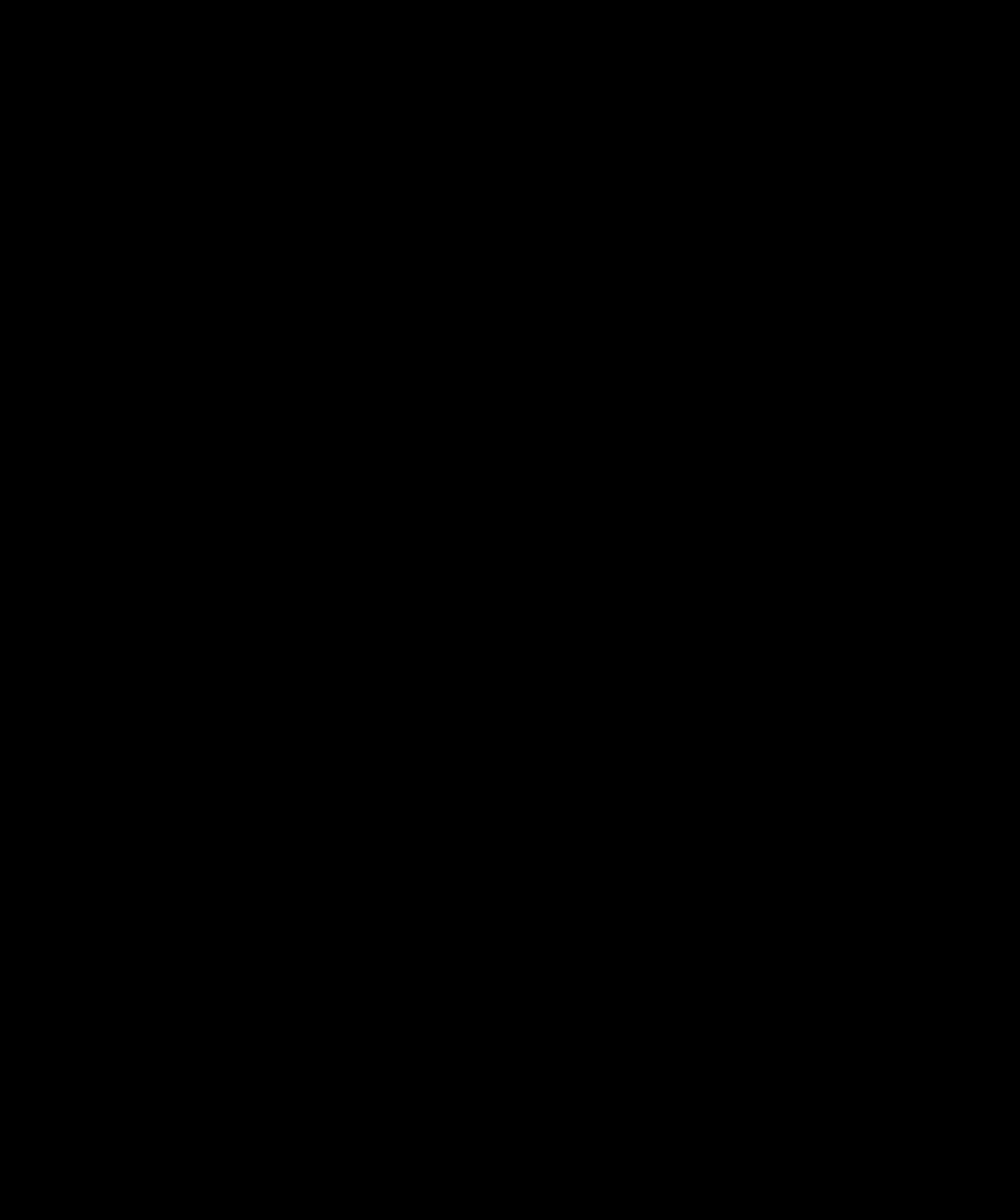 Elliptical Frame Vector Karangan Bunga Hitam Putih Transparent