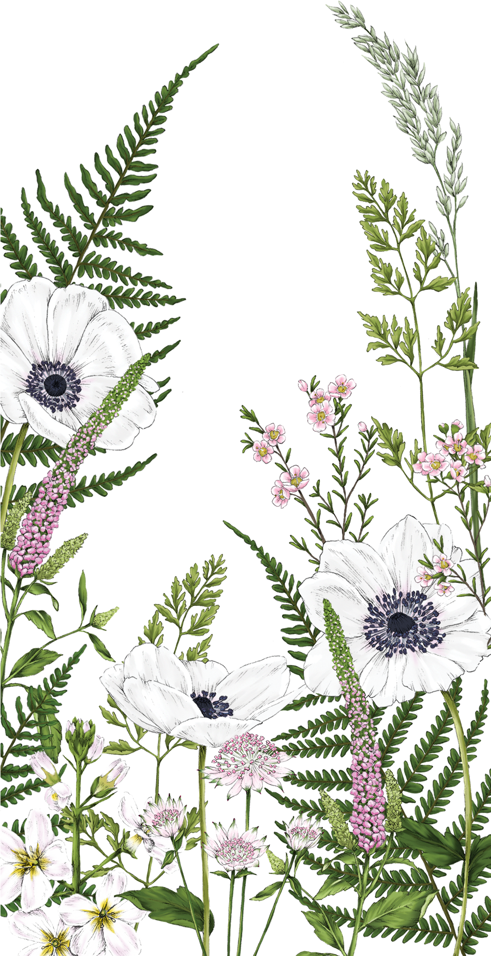 Wildflower Drawing Wallpaper Iphone ...