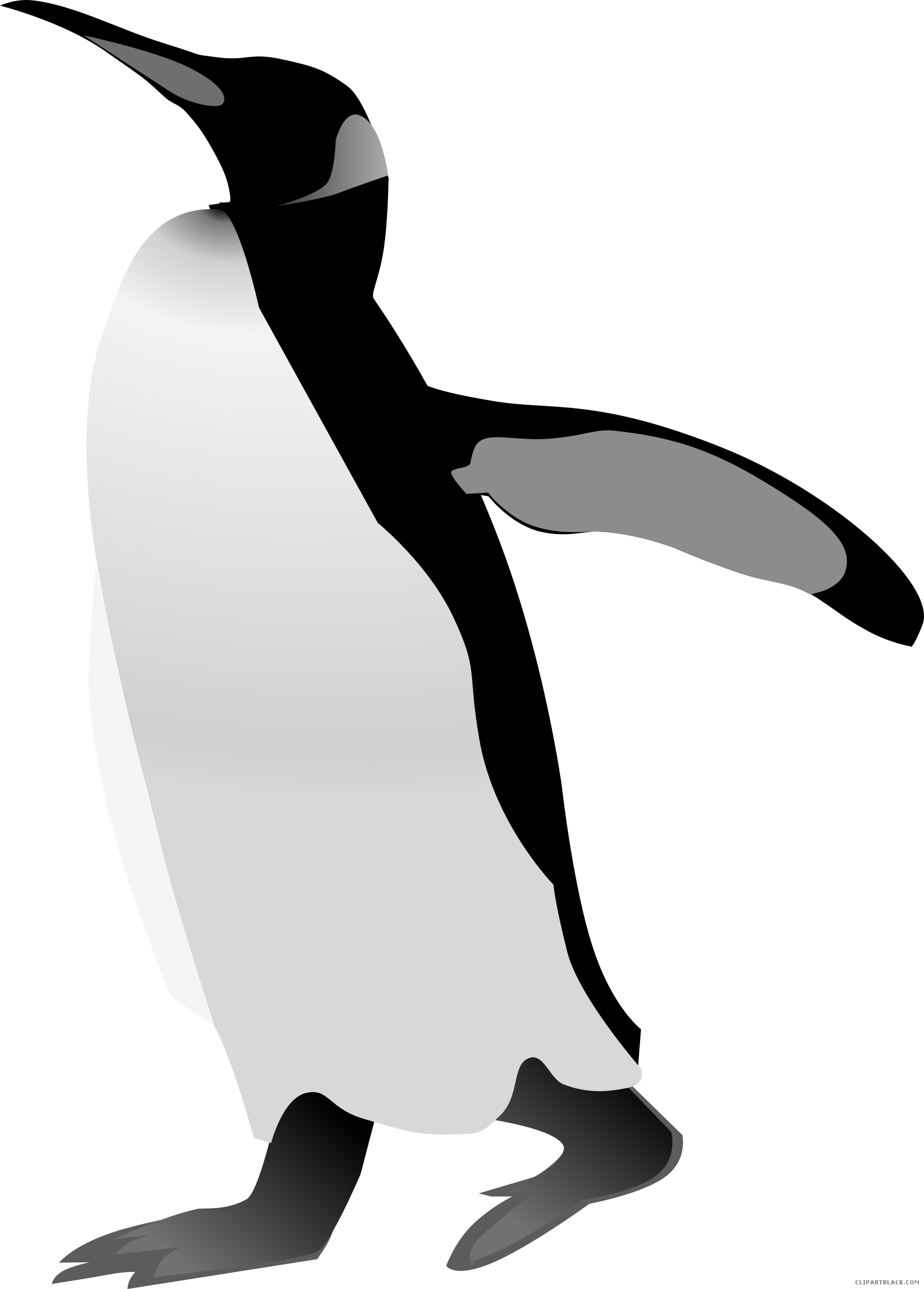 Penguin clipart black and white 5   Nice clip art