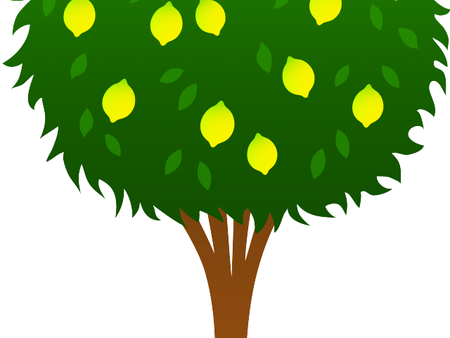 Transparent seed clipart - Seed Clipart Arch Tree - Orange Tree Clipart