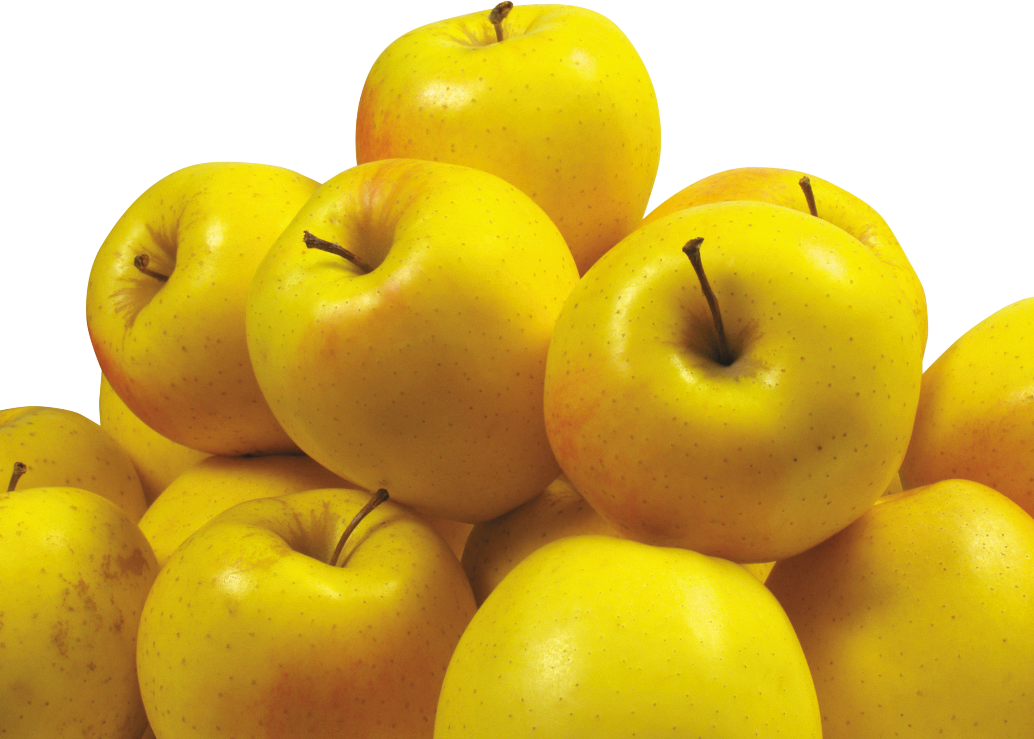 Transparent yellow apples clipart - Yellow Apple's - Yellow Apples Png
