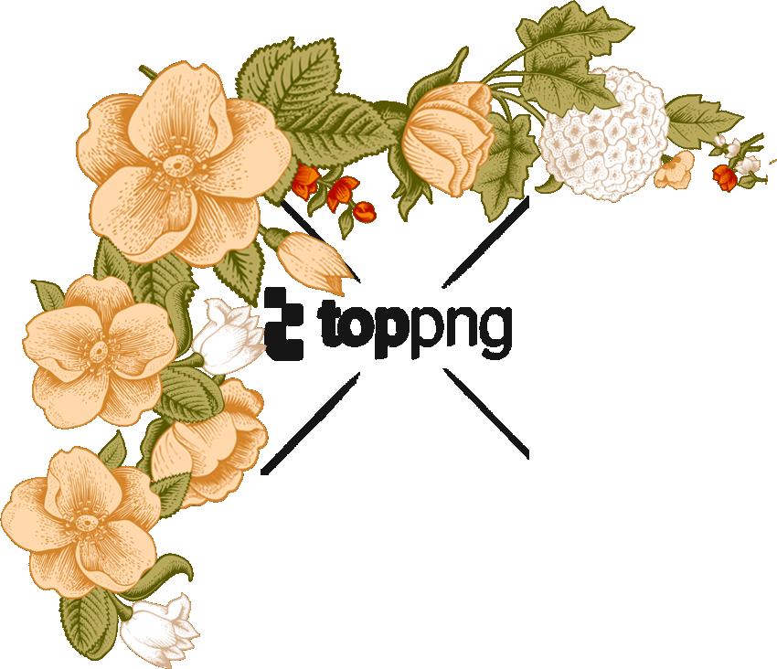 Transparent floral clipart designs - Flower Border Png - Flower Photo Frame Design