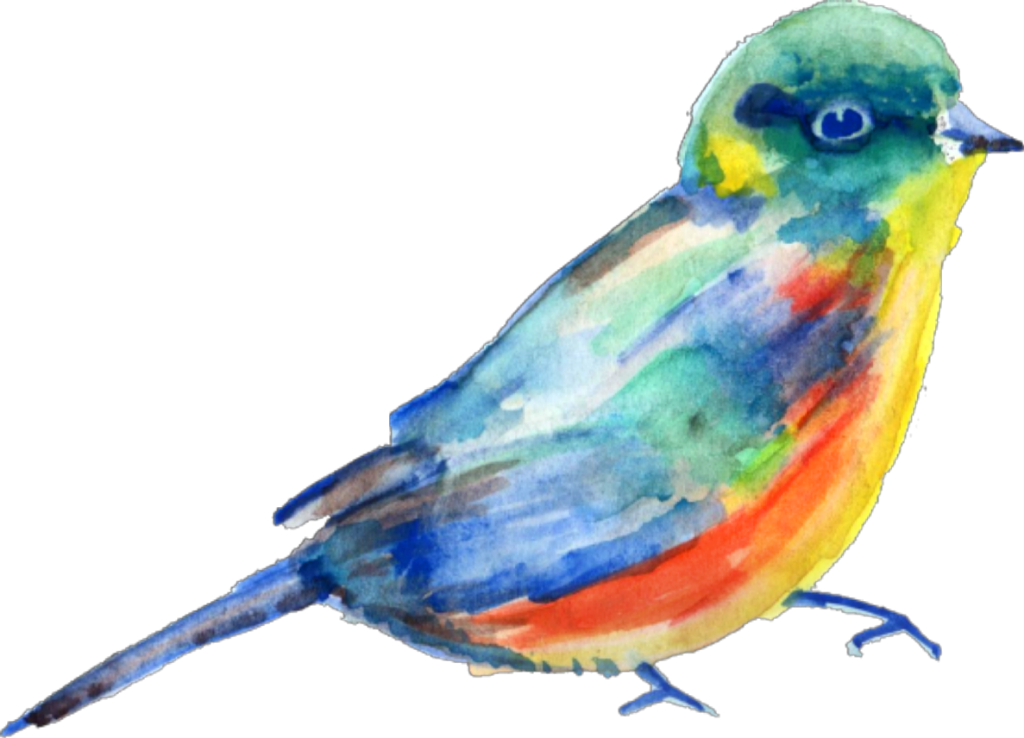 Transparent watercolor bird clipart - #ftestickers #watercolor #bird #teals #blue - Watercolor Painting Transparent Png Watercolor Bird