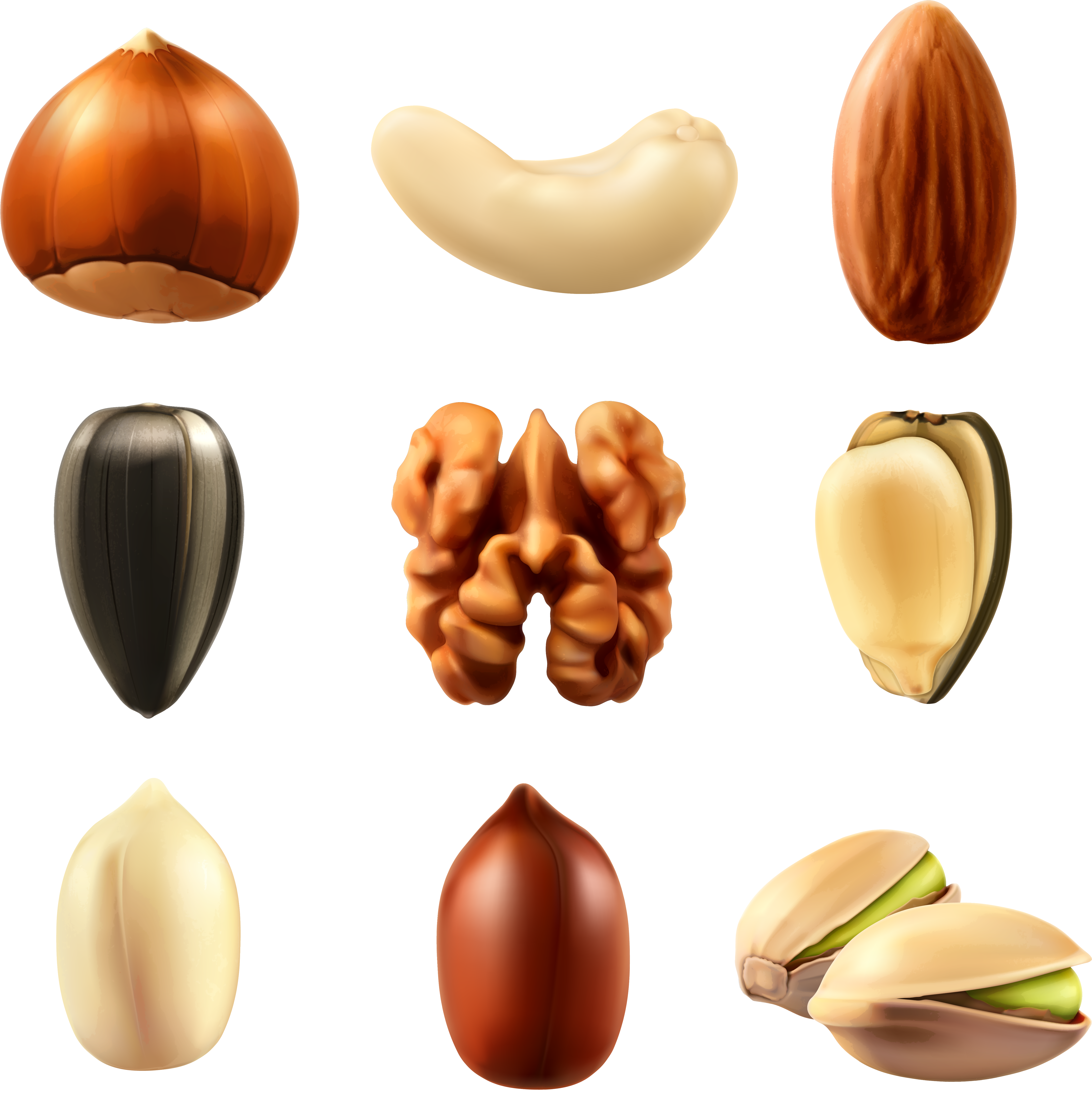 Transparent peanut clipart - Nuts Collection Png Clipar Image Gallery Yopriceville - Nuts Png
