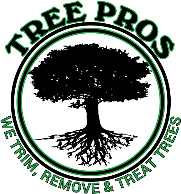 Transparent tree of life with roots clipart - Tree Pros Complete Tree Care Service Company - Tree Company Logo