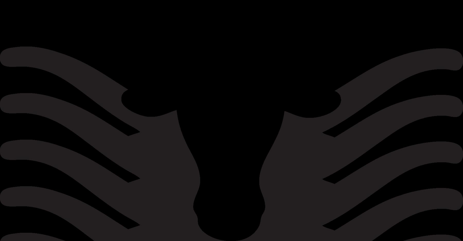 Contest Texas Longhorns Black Transparent Cartoon Jing Fm
