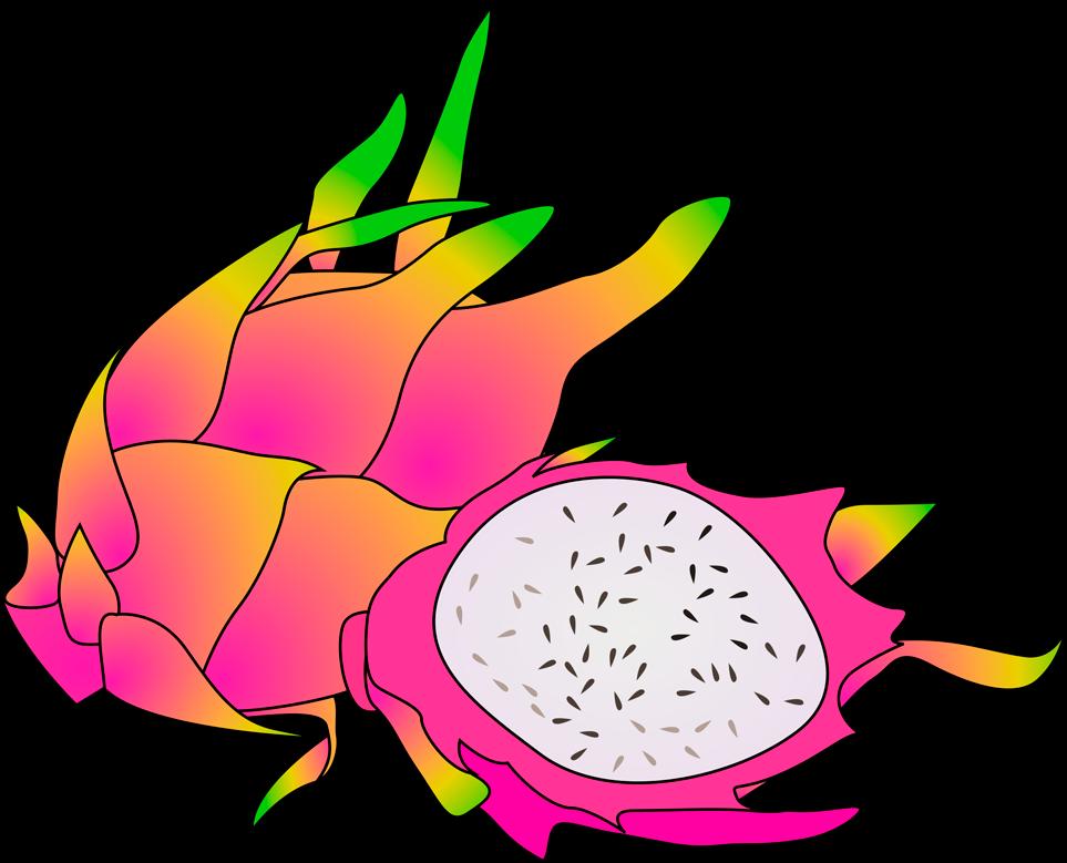 Transparent fruits clipart - Dragon Fruit Clipart Free Dragon Fruit Clipart Images - Dragon Fruit Fruit Clipart