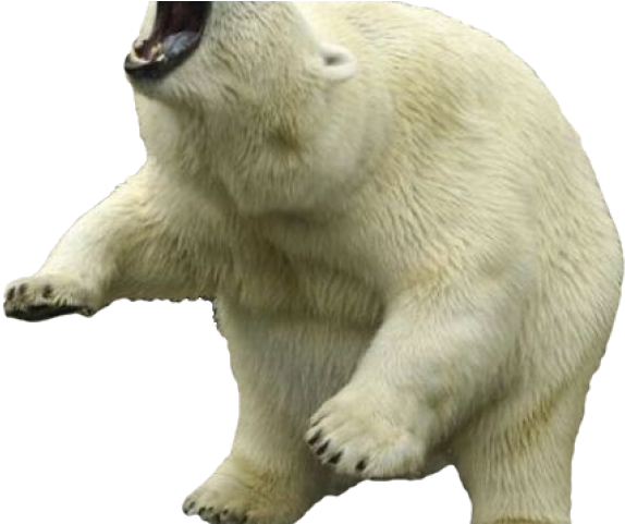 Transparent polar animal clipart - Clipart Wallpaper Blink - Polar Bear With Transparent Background