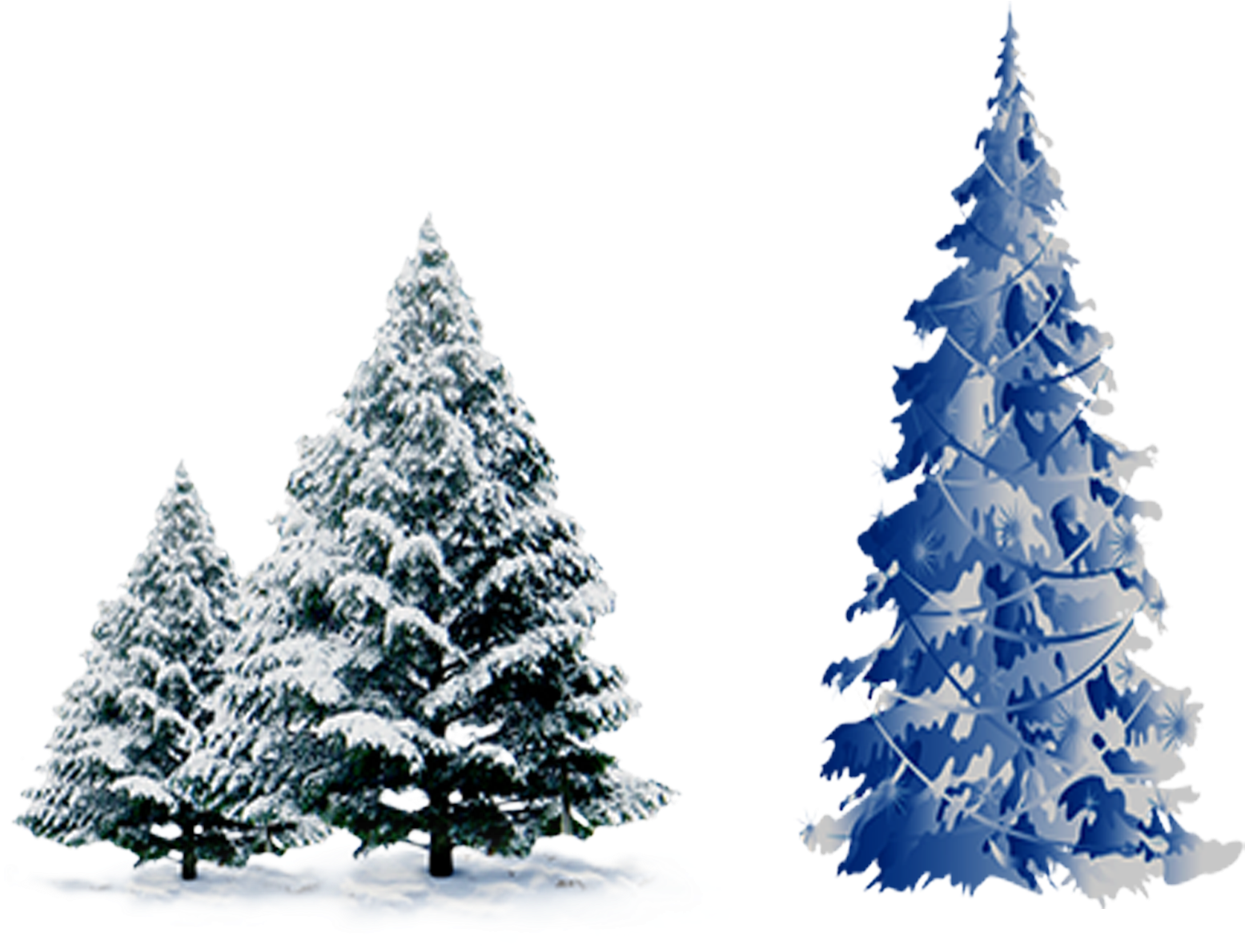 Transparent winter pine tree clipart - Snow Pine Png - Blue Christmas Tree Vector Png