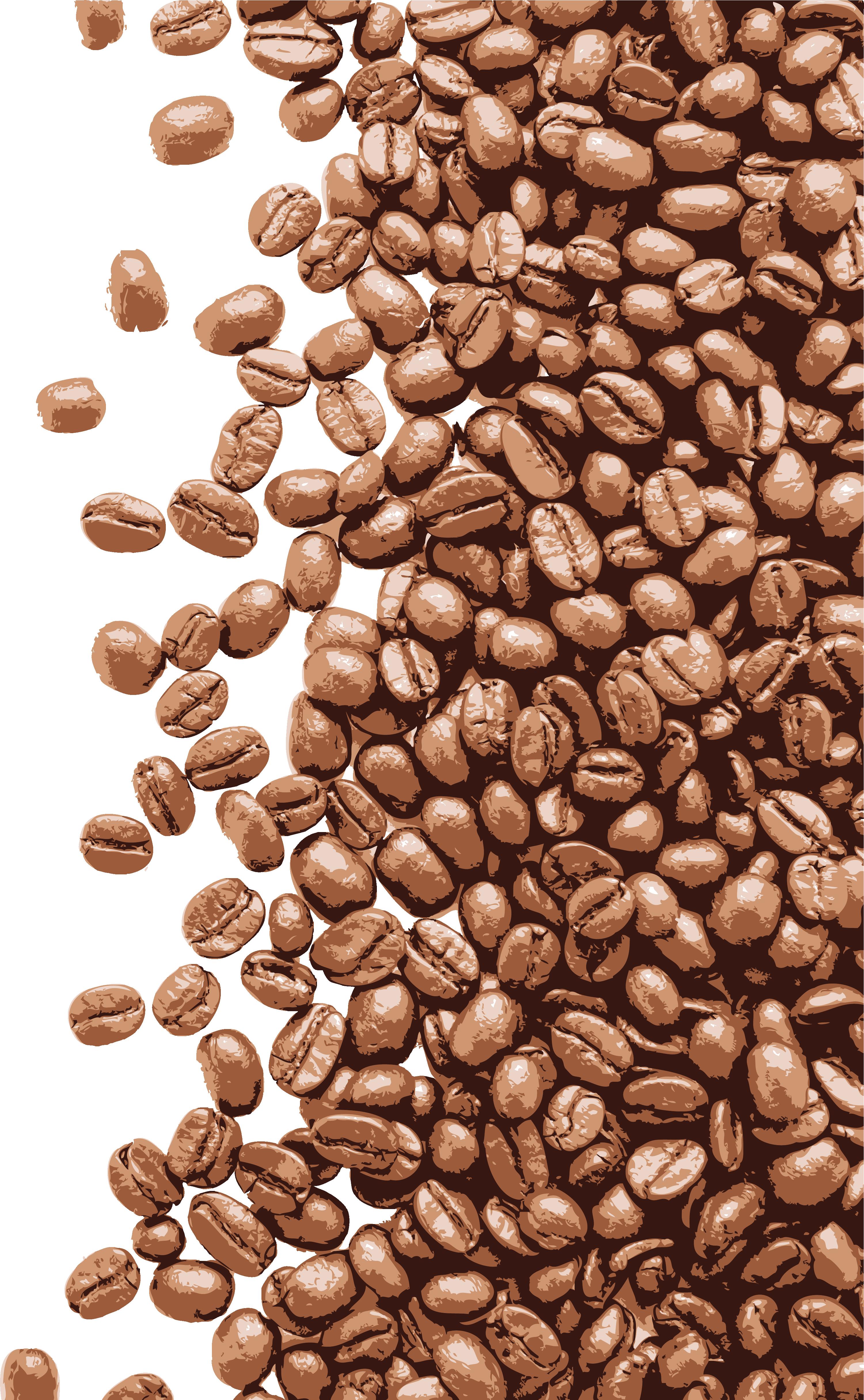 Beans Vector Espresso Bean - Coffee Beans Vector ...