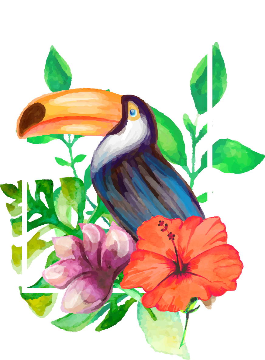 Clipart Pineapple Toucan Flower Aesthetic Drawing Transparent Cartoon Jing Fm
