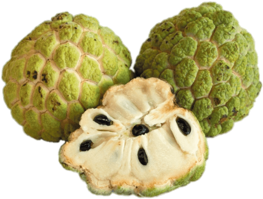Transparent custard apple clipart - Download - Custard Apple Vs Sweet Apple