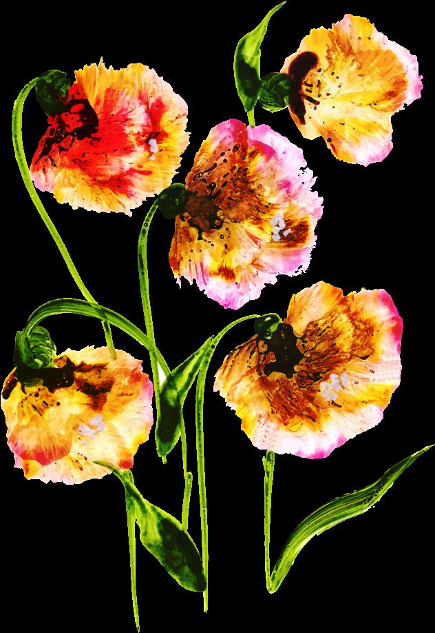 Transparent floral bouquet clipart - Free Png Floral Bouquets - Common Peony