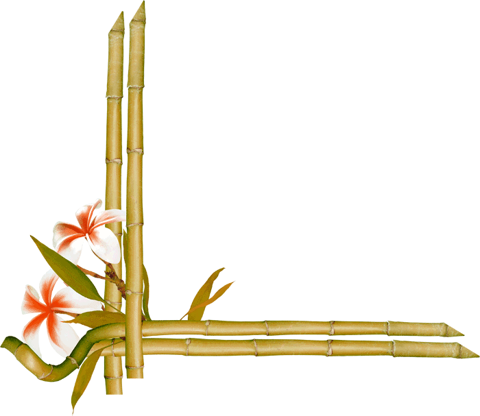 Transparent bamboo frame clipart - Bamboo Border Png - Bamboo Flower Frames And Borders