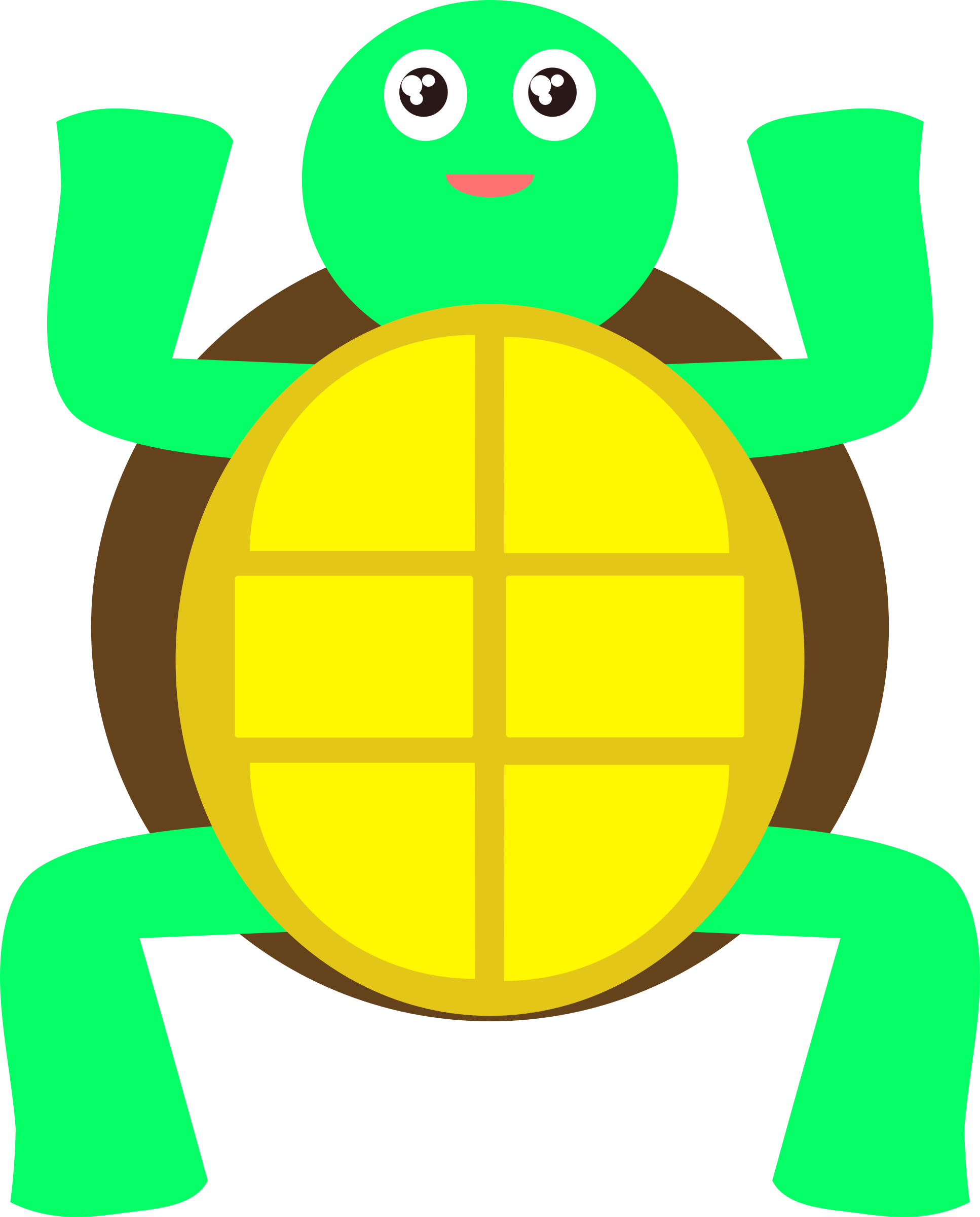 Tortoise Green Sea Turtle Reptile Animated Cute Gif Turtle