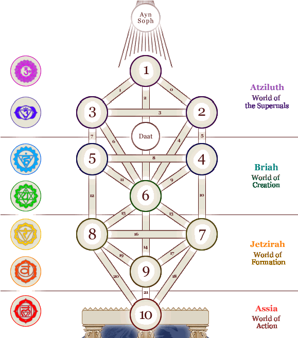 Transparent tree of life clip art - Clip Art Royalty Free Download First Root Base Of The - Tree Of Life Chakras