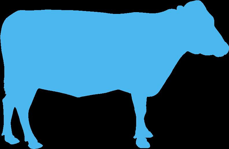 Transparent cow head clip art - Vaca Silhueta