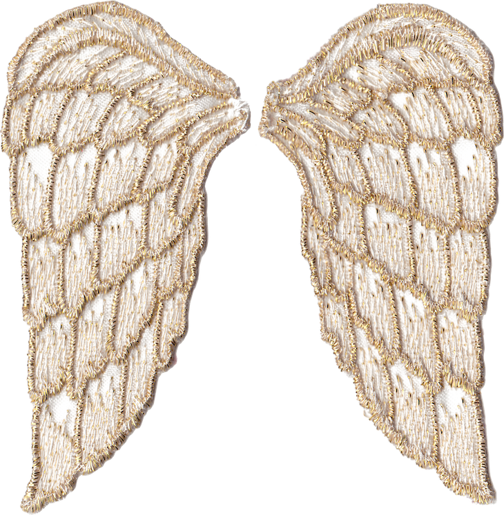 picture regarding Golden Snitch Wings Printable titled Golden Angel Wings Totally free Png Information And â'¸ - Printable Angel