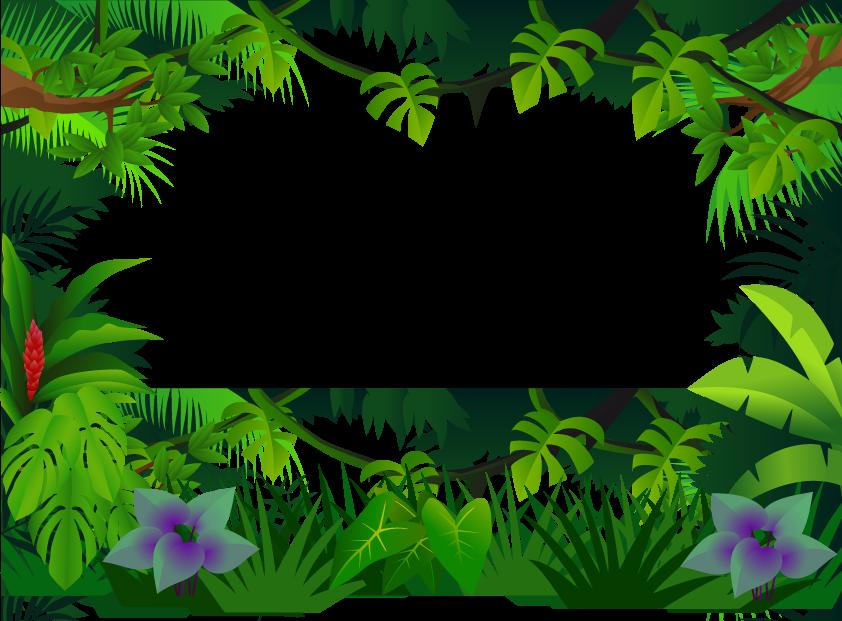 Transparent jungle clipart - Jungle Border Clipart Jungle Clip Art - Jungle Frame Png