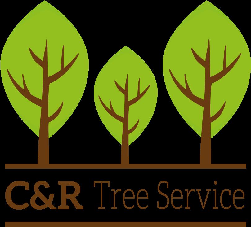 Transparent tree service clip art - Clip Art