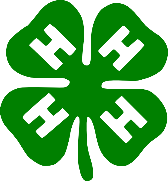 Download Charming 4h Clover Clip Art - 4h Grows Here Logo, Cliparts &  Cartoons - Jing.fm