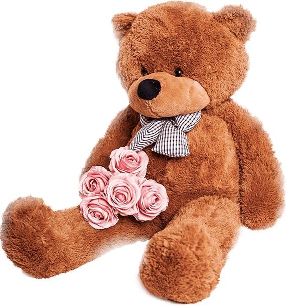 Pink Teddy Bear Transparent