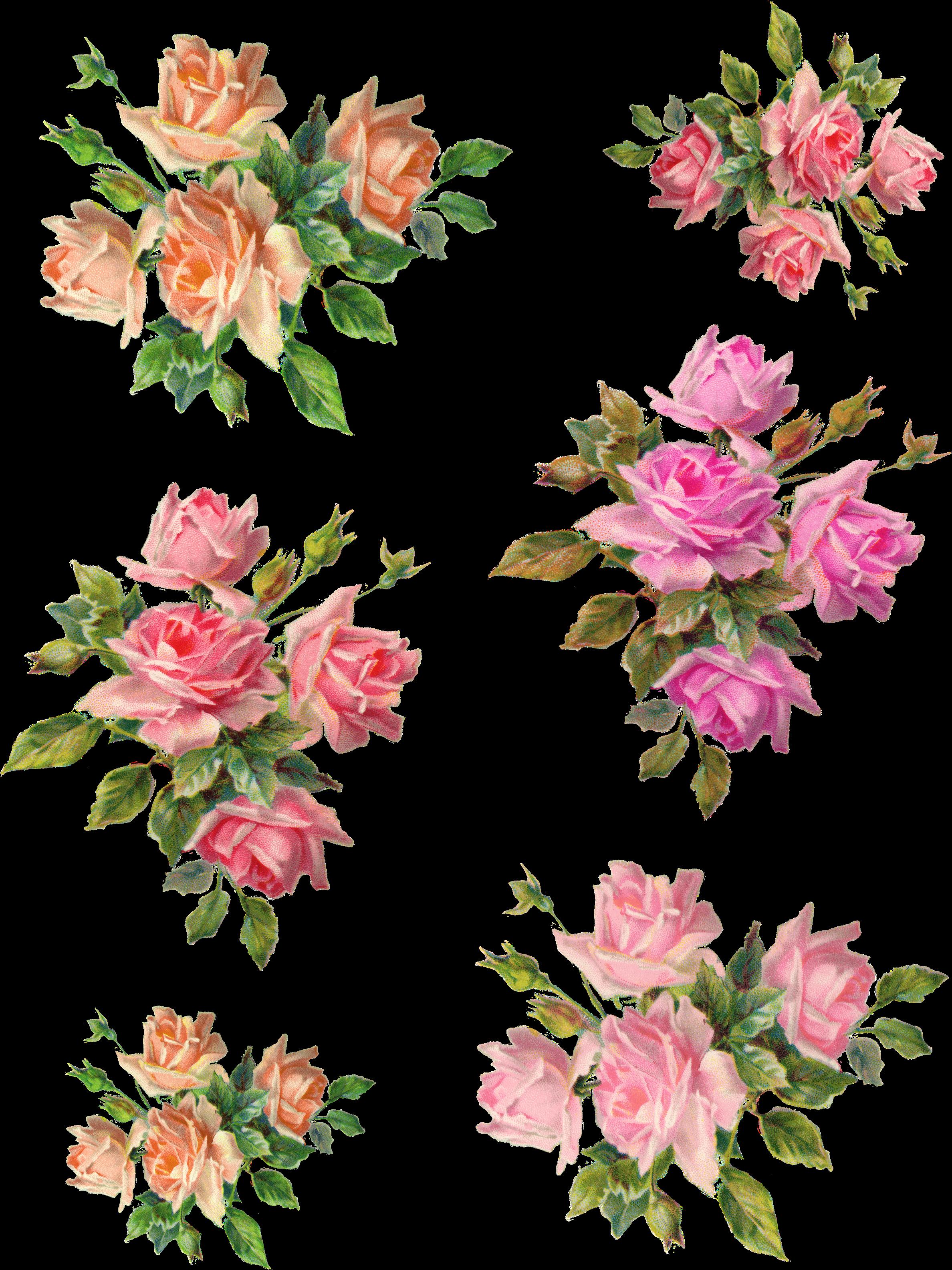 Transparent vintage flowers clipart - Vintage Flower Clipart Wonderful - Vintage Rose Pink In Png