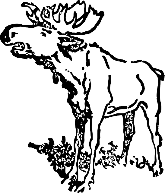 Transparent antlers cartoon clipart - Loud, Moose, Animal, Antlers, Head, Cartoon - Black And White Moose Clip Art Realistic