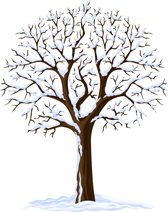 Transparent winter tree clipart images - Winter Season Tree Clipart