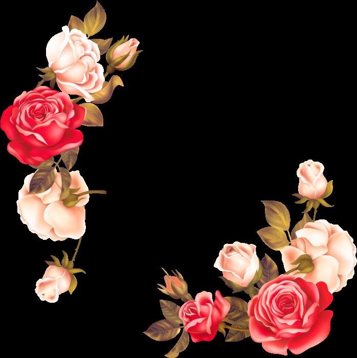 Transparent floral border clipart - Rose Flower Border Png