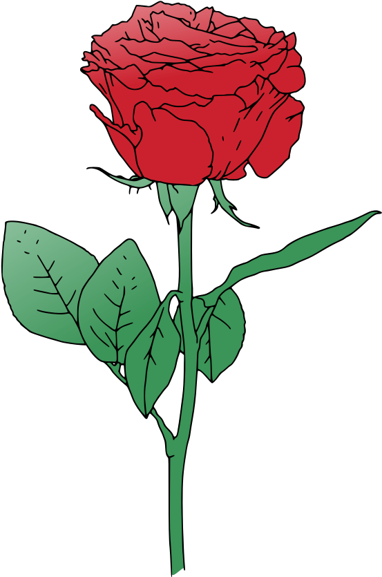 Transparent long stem rose clipart - Single Red Rose Clip Art - Red Rose Vector Art