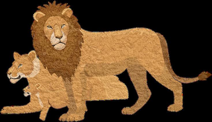 Lion Pixabay Animal Lioness Vintage Cougar Lion King 2019