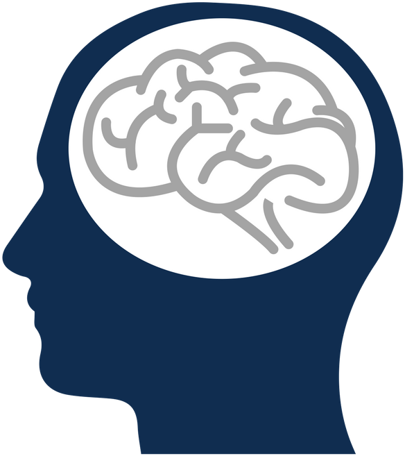 Transparent head injury clipart - Person With Brain