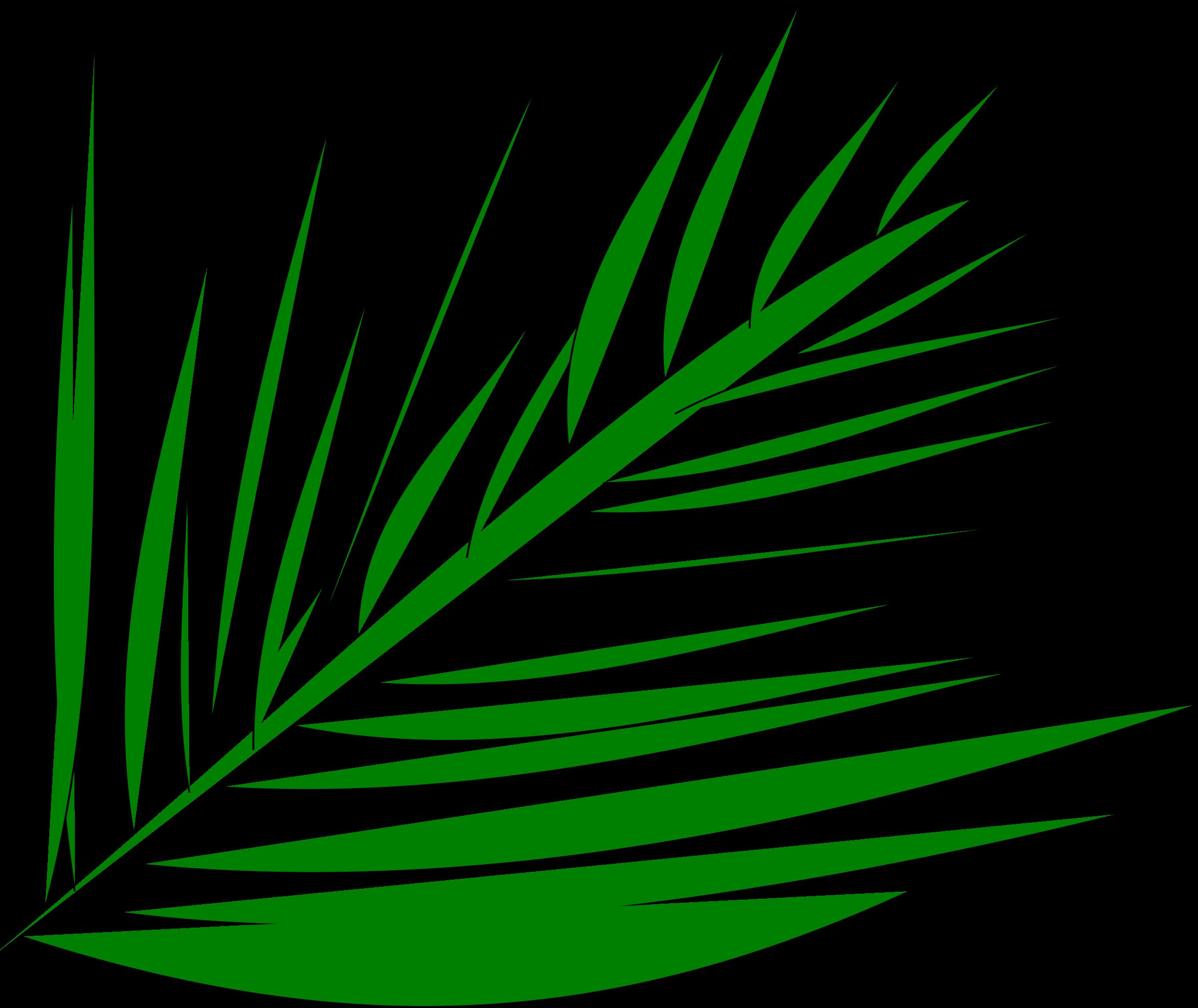 Transparent tropical leaf clipart - Palm-leaf Manuscript Palm Trees Computer Icons Palm - Palm Tree Branch Clip Art