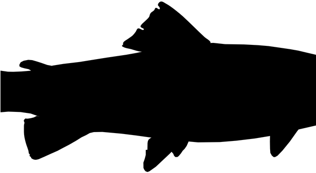 Fishing Pole Clipart Transparent Background Trout Silhouette Png Transparent Cartoon Jing Fm