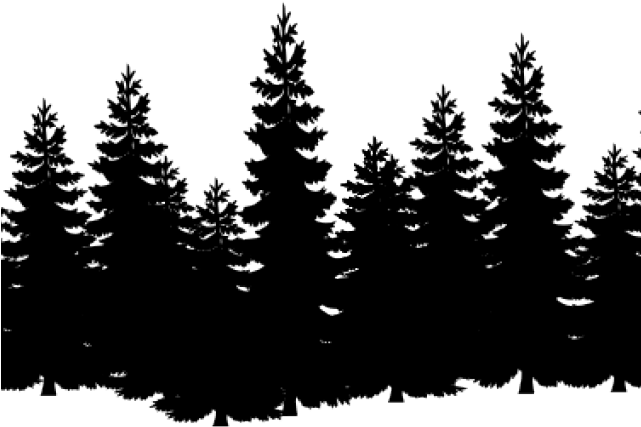Transparent forest clipart backgrounds - Forest Clipart Transparent Background - Pine Trees Black And White